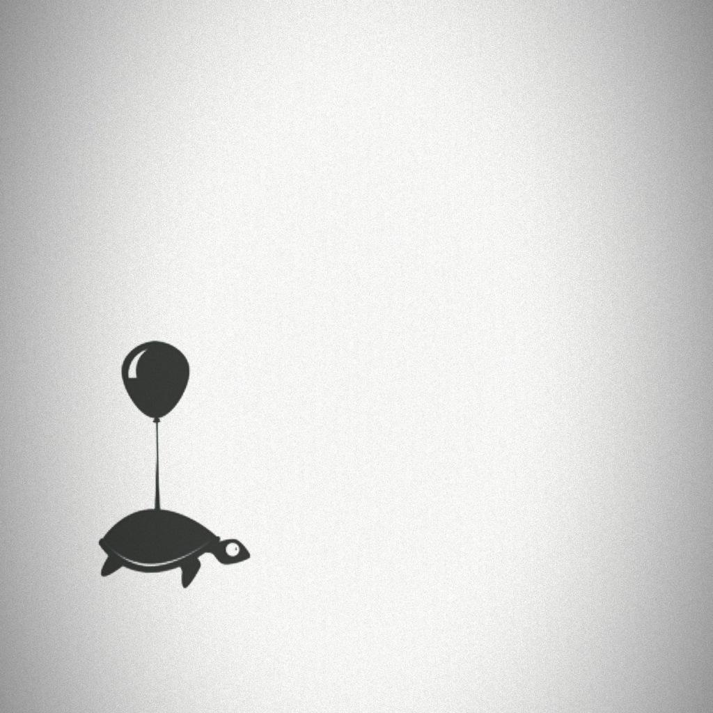 Turtle by Tom Reinert